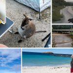 The Hidden Paradise of Mt William National Park, Tasmania